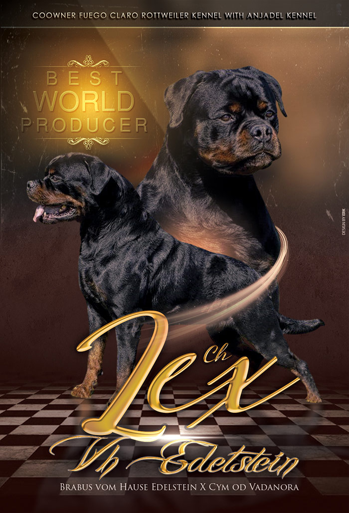 Best world rottweiler producer